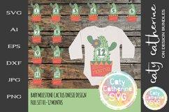 Cactus 01-12 Months Baby Milestone Design SVG Product Image 1