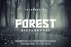 FOREST display font Product Image 5