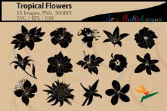 Tropical flowers silhouette svg / HQ / flowers silhouette / vector tropical flowers / all kind of flowers / SVG / PNG / Eps /Dxf / instant Product Image 1