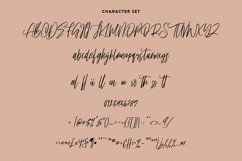 Ownttys Signature Script Font Product Image 6