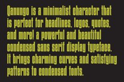 Qanungo - Condensed Font Product Image 5