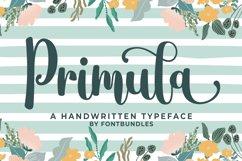 Primula Product Image 1