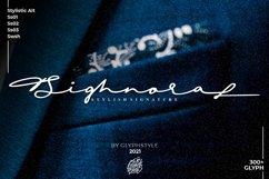 Sighnora Stylish Signature Product Image 1