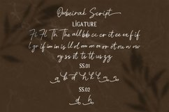 Web Font | Owbeirak Collection Product Image 3
