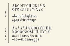Average - Modern Serif Typeface Product Image 14