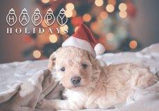 Jingle Bells - A Fun Christmas Font Product Image 2