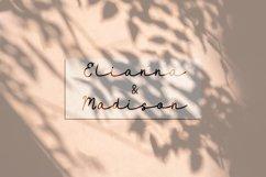 Maidenhair   Monoline Web Font Product Image 2