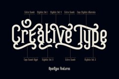 Frizzy vintage font Product Image 2