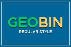 GEO BIN Regular Product Image 1
