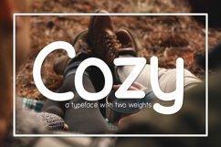 Web Font Cozy Product Image 1