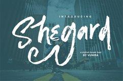 Shegard | A Stylish Brush Font Product Image 1