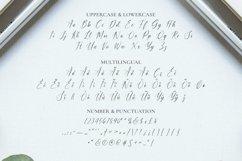 Web Font Shopie & Keanu Font Product Image 4
