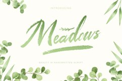 Meadows   Textured brush script font Product Image 1