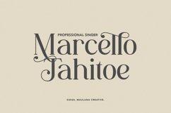 Wallace - Decorative Serif Font Product Image 9