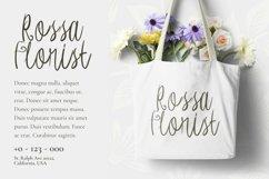 Web Font Carrotin Font Product Image 2