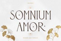 Somnium Amor Product Image 1