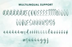 Web Font Aigrette - Beautiful Font Product Image 6