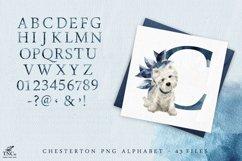 Westie Dog Illustration Set + Bonus Patterns & Alphabet Product Image 6