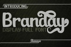 Branday Unique Display Font Product Image 1