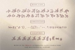 Filladelphia - Beauty Elegant Script Product Image 4
