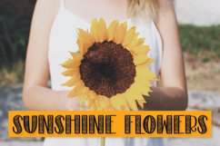 Sunflower - A Sunflower Duo Font Product Image 4