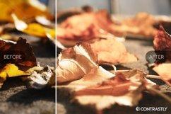 Autumn & Harvest Lightroom Presets Vol.2 Product Image 3
