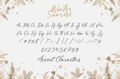 Winter Sunrise Modern Handbrushed Calligraphy Font Product Image 6