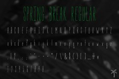 Spring Break Font & Bonus Graphics Product Image 4