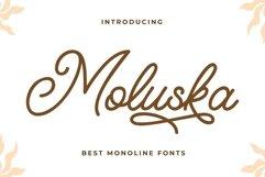 Moluska - Beautiful Monoline Fonts Product Image 1