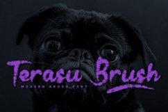 Terasu Brush Product Image 1
