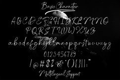 Pattrick Regan Signature Font Product Image 7
