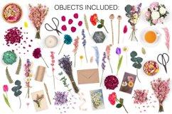 Botanical Scene Creator - Top View Product Image 3