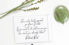 Figs Pie Script Font Product Image 3