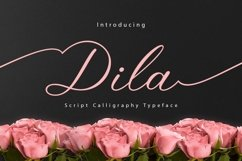 Web Font Dila Script Product Image 1
