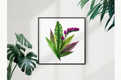 Watercolor bouquets of tropical leaves and flowers. Vintage Product Image 3