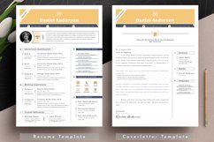 Resume Cv Template With Editable Word Apple Pages Format Product Image 4