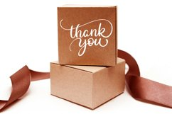 Thank You Calligraphy Lettering Collection Product Image 5