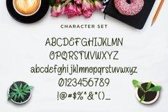 Web Font Diarise Product Image 3