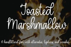 Toasted Marshmallow - A handlettered script font Product Image 1