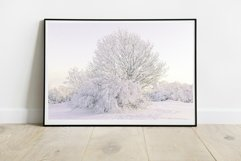 Snow Tree - Wall Art - Digital Print Product Image 2