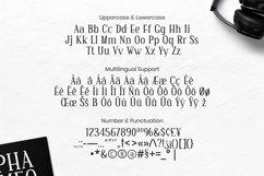Web Font Fabian Font Product Image 4