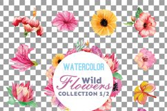 Watercolor wild flowers clip art pack, exotic watercolor flowers valentine clip art. Eps, png, jpg, svg,  vector files included. Part 1/2 Product Image 5