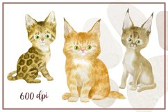 Furry friends. Kittens. Watercolor clip arts Product Image 4