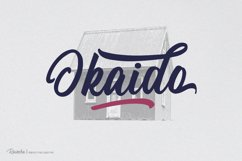 Rainsha Script Font - Extras Swash Product Image 2
