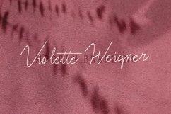 Violitta Signature typeface Product Image 3