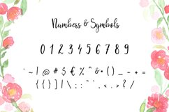 Blanchefleur Calligraphy Font Product Image 6