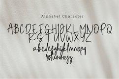 Steam danglem signature Font Script Product Image 4