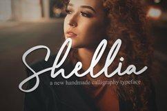 Shellia Product Image 1
