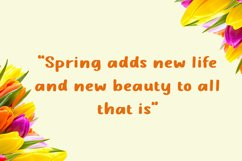 Spring Plum - Display Font Product Image 2
