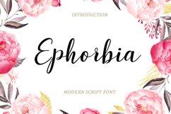 Modern Script Font Bundle Product Image 10